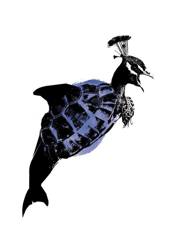 van Kladderadatsch - Peacock Blue