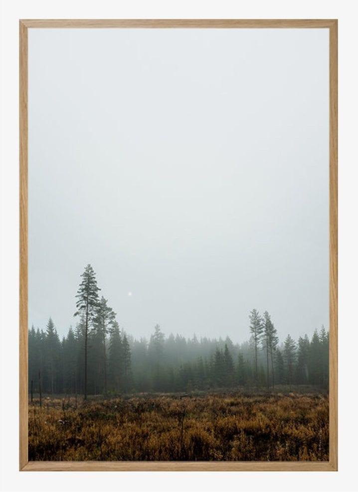 fine little day skog poster the poster club. Black Bedroom Furniture Sets. Home Design Ideas