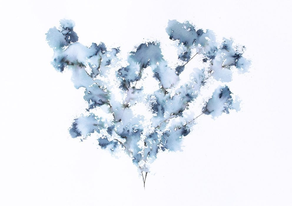 Trine Holbaek - Field flower blue