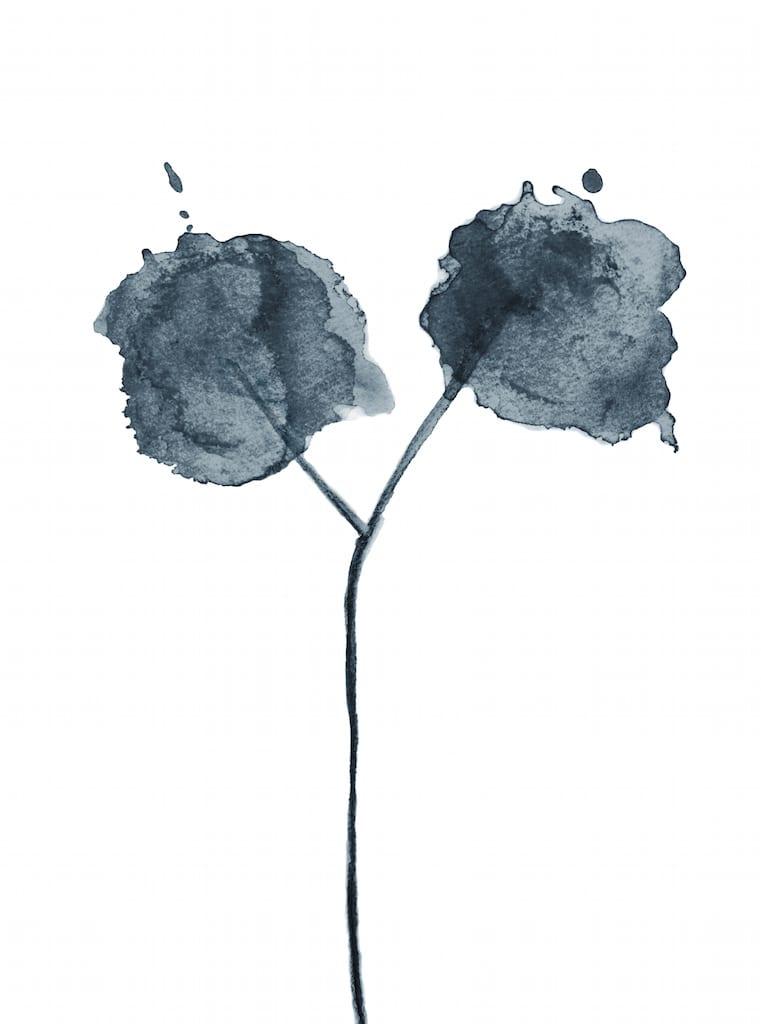 Trine Holbaek - Flora