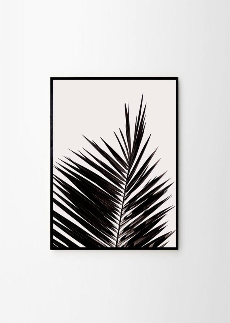 Coco Lapine - Palm Leaf