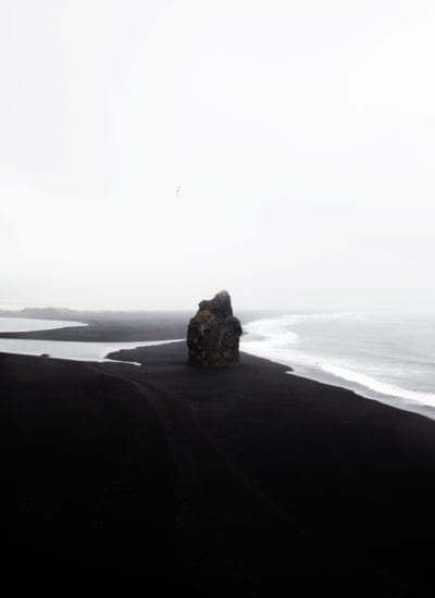 Coco Lapine - Black Beach