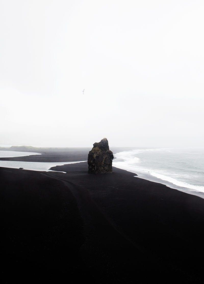 Coco Lapine - Black Beach