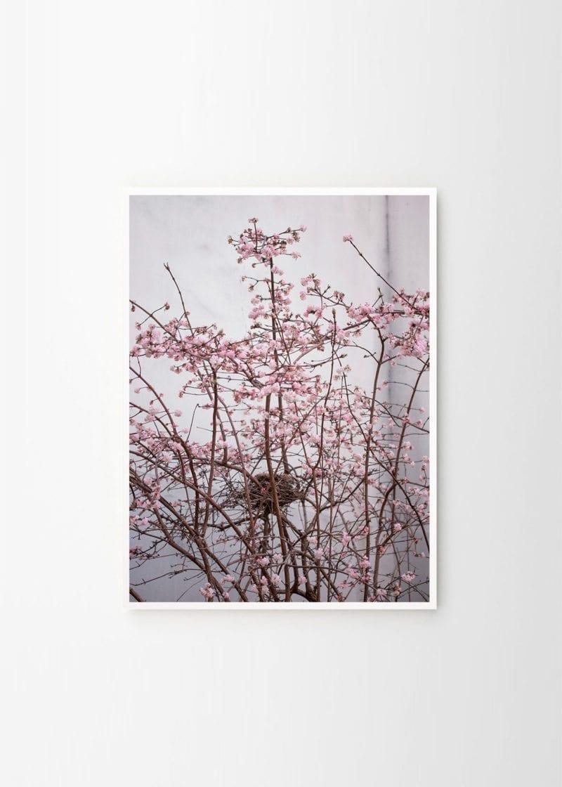 Hilde Mork - Paris 04