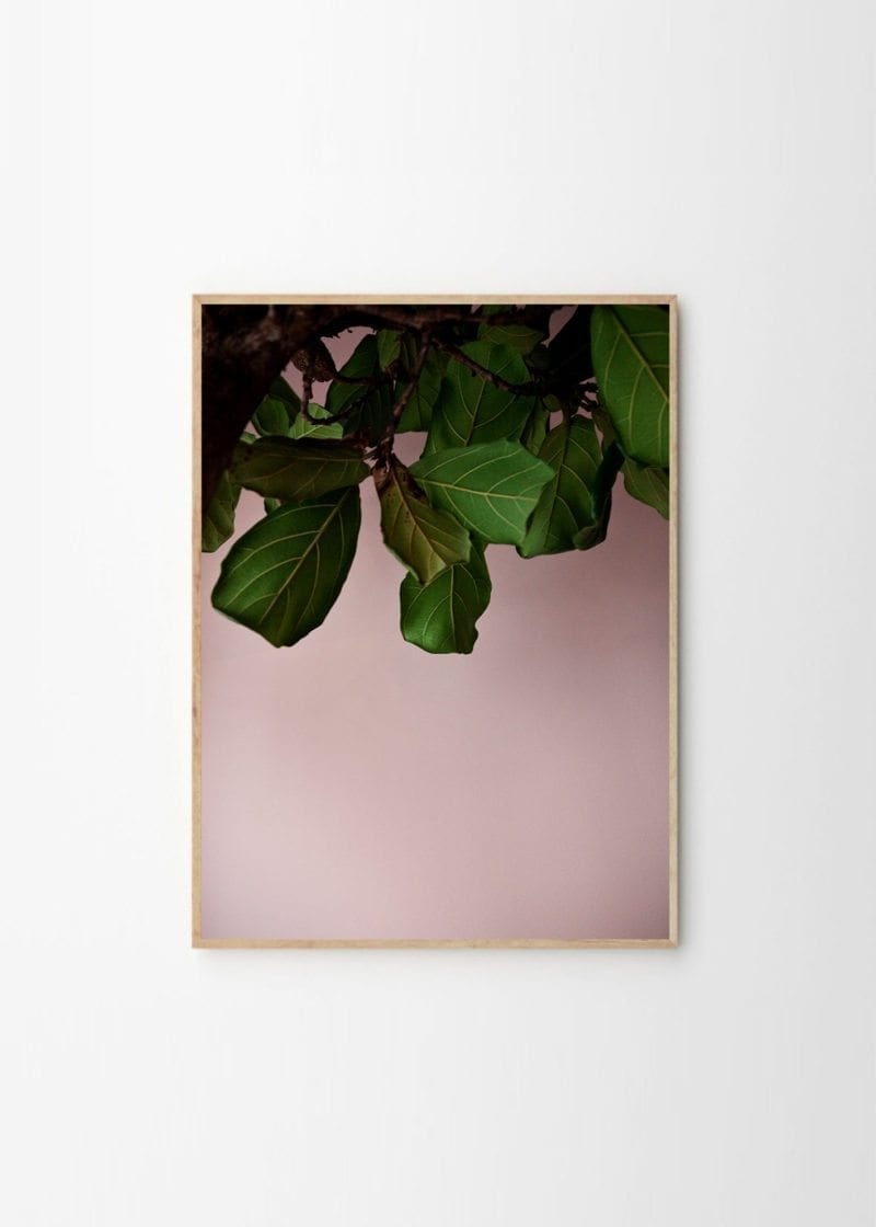 Paper Collective x Norm Architects - Green Leaves
