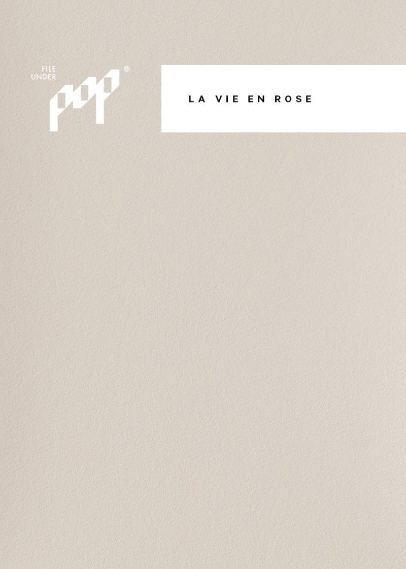 Frame Paint - La Vie En Rose