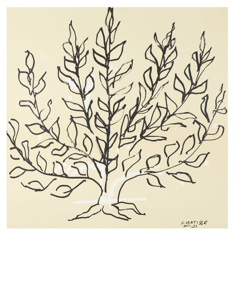 Gallerie Maeght - Matisse, Le Buisson, 1951